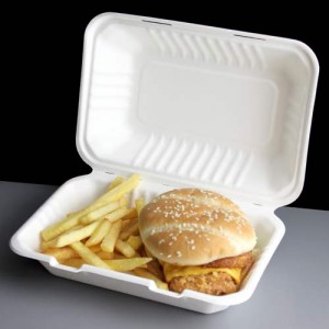bagasse-meal-box-open-burger-l